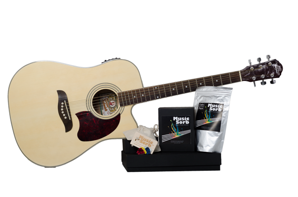 music sorb guitar humidifier